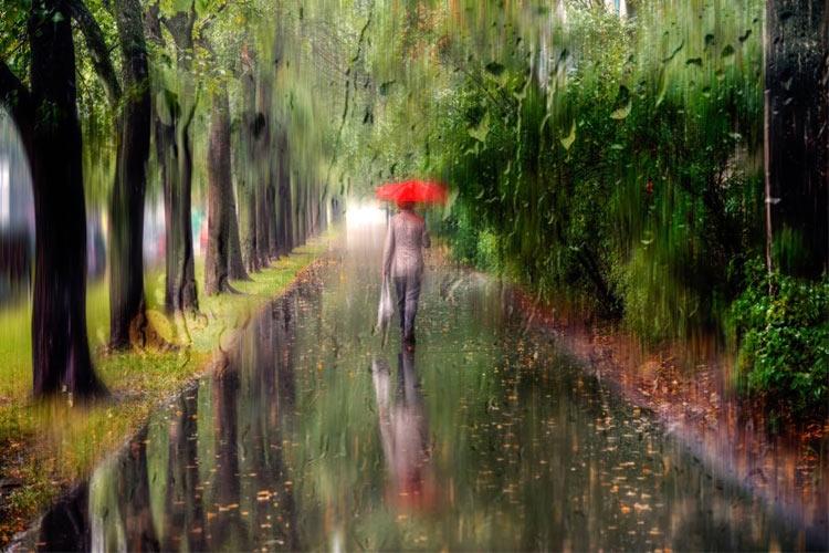 پروژههای عکاسی- خیابانهای خیس از باران / گزارش تصویری