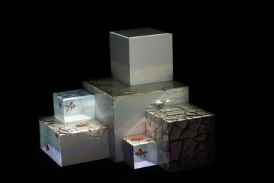 نگاهی به 8 چیدمان دهمین جشنواره هنرهای تجسمی فجر