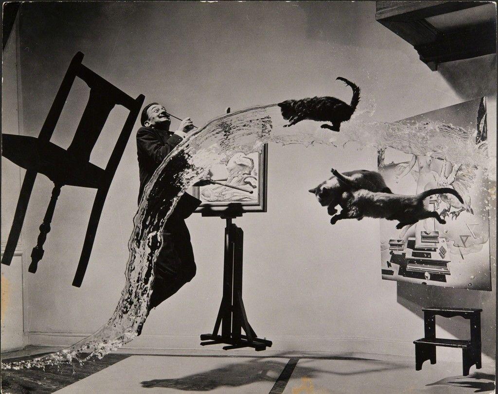 ماجرای عکس سوررئال Salvador Dalí و سه گربهی پرنده