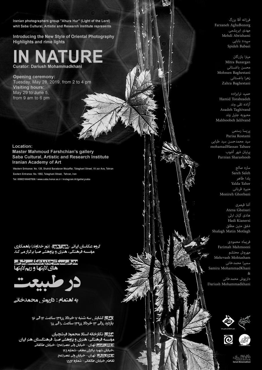 برپایی نمایشگاه عکس «هایلایت ها و ریملایت ها در طبیعت» در موسسه صبا