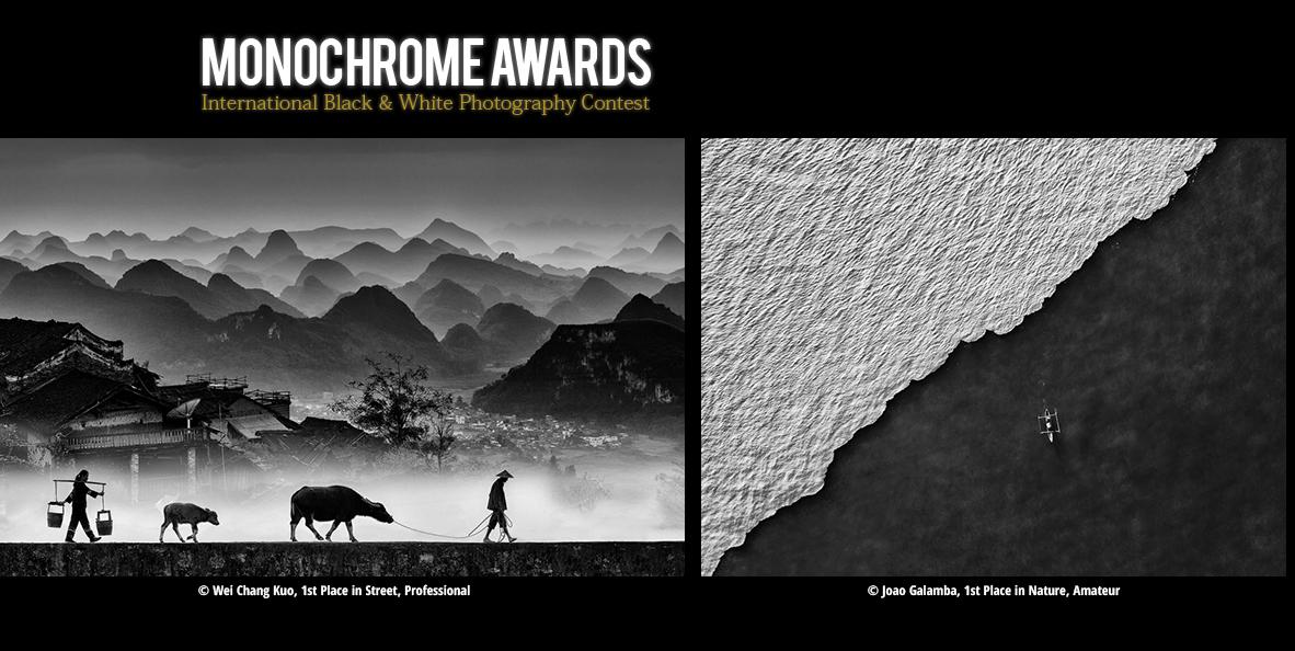 رقابت بین المللی عکاسی سیاه و سفید 2020