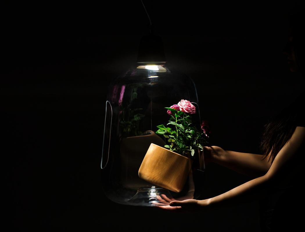 نورپردازی محیط داخلی در ترکیب با گیاهان آپارتمانی