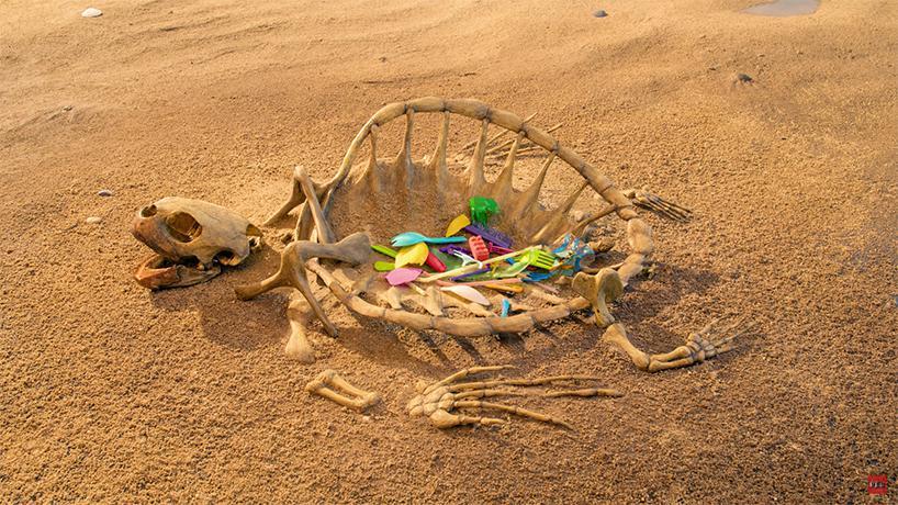 نمایش فریم به فریم بلایی که زباله بر سر دریا ها میآورد