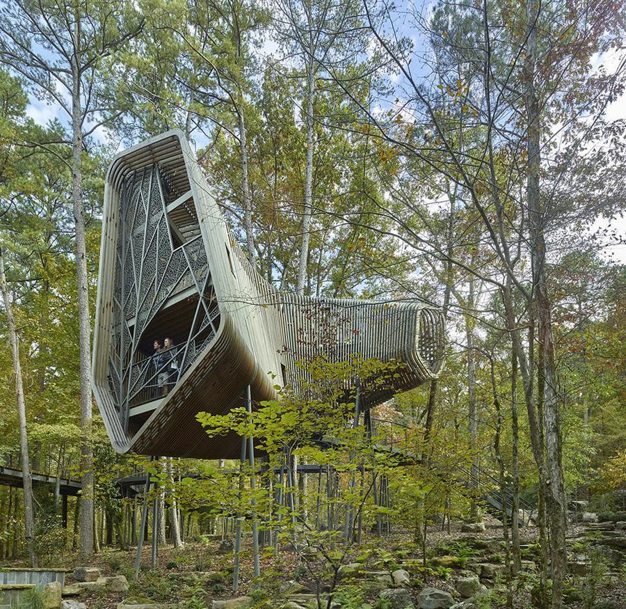 طراحی خانه درختی برای دانشگاه Arkansas