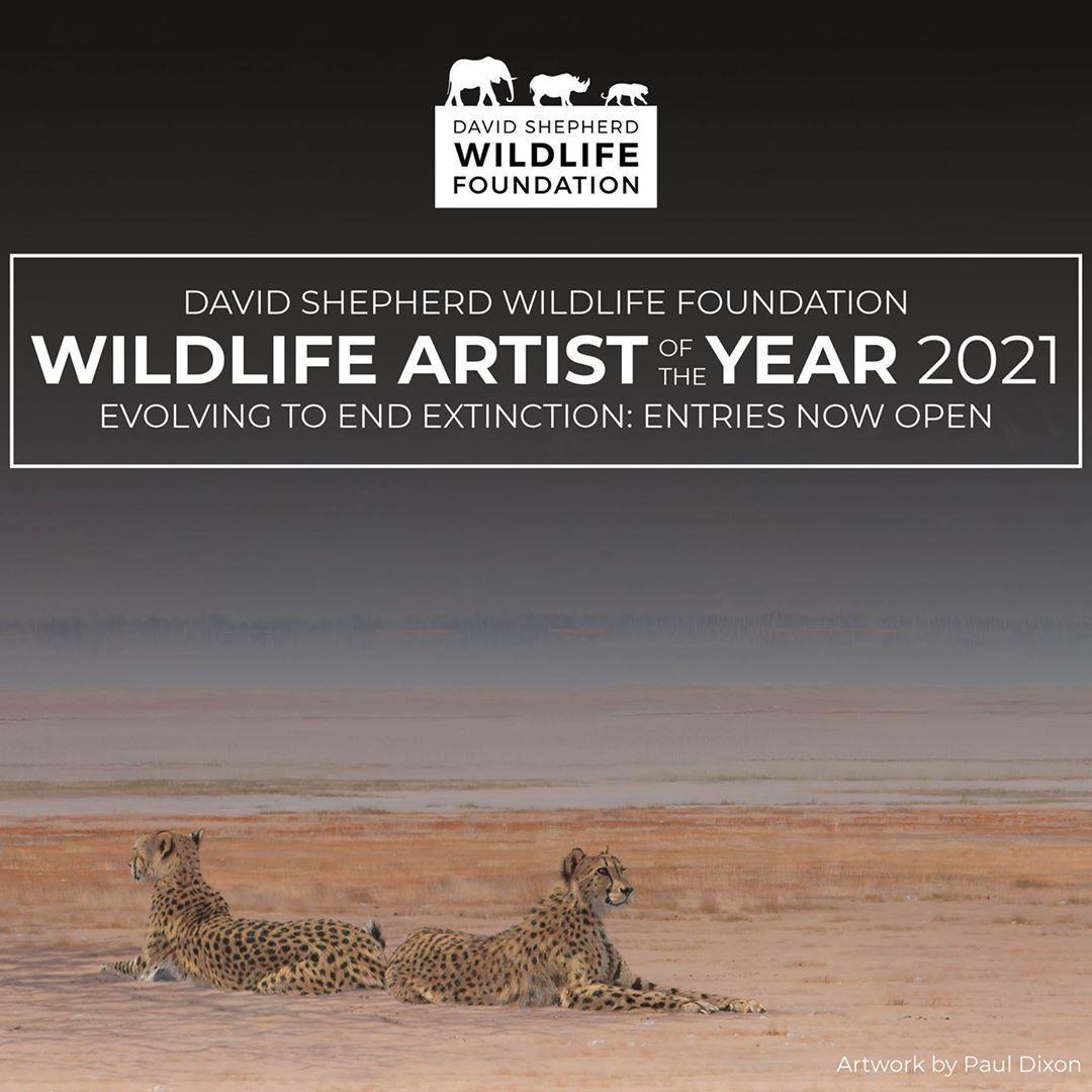فراخوان رقابت Wildlife Artist of the Year