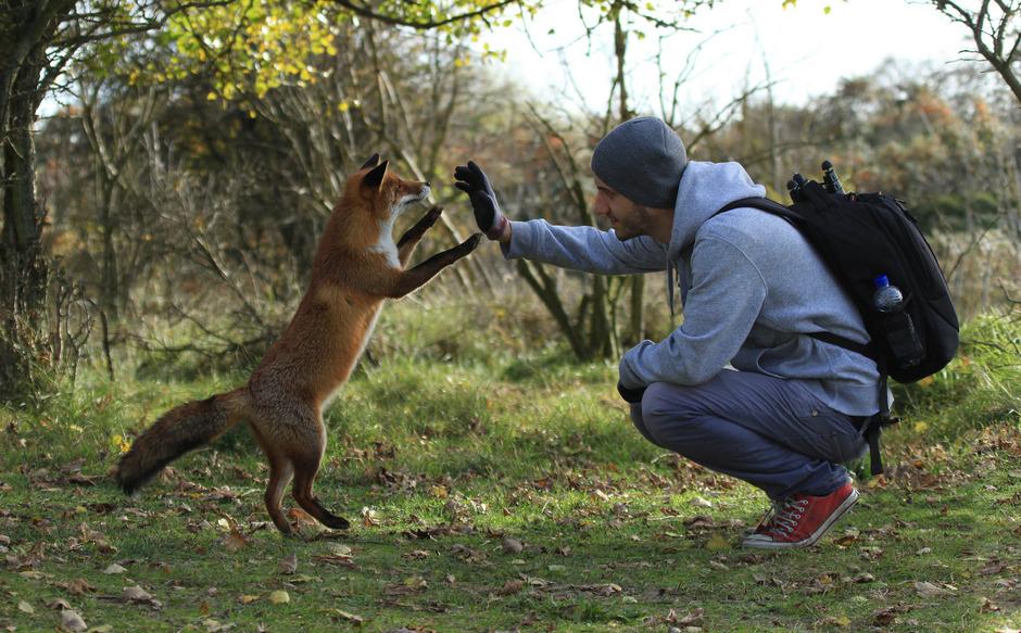 لحظات دوست داشتنی حیات وحش در قاب دوربین Julian Rad