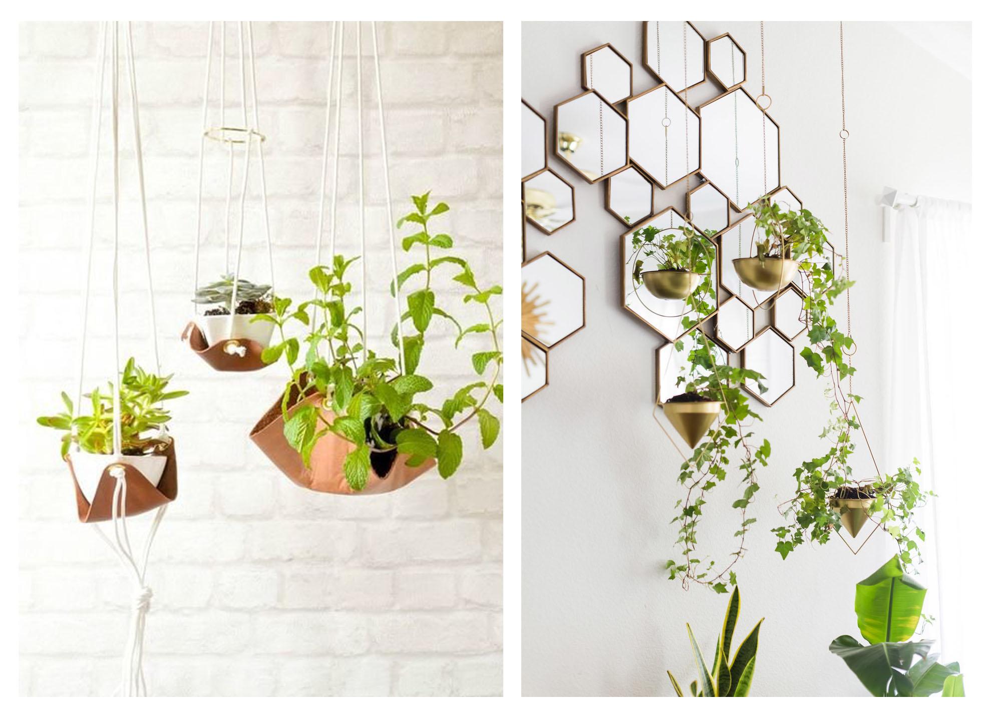 ایده هایی برای استفاده از گیاهان در دکوراسیون داخلی (بخش دوم)