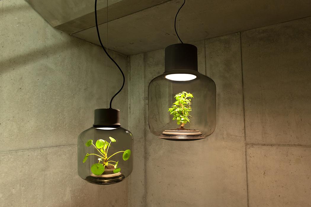 گلدانی با قابلیت ایجاد روشنایی