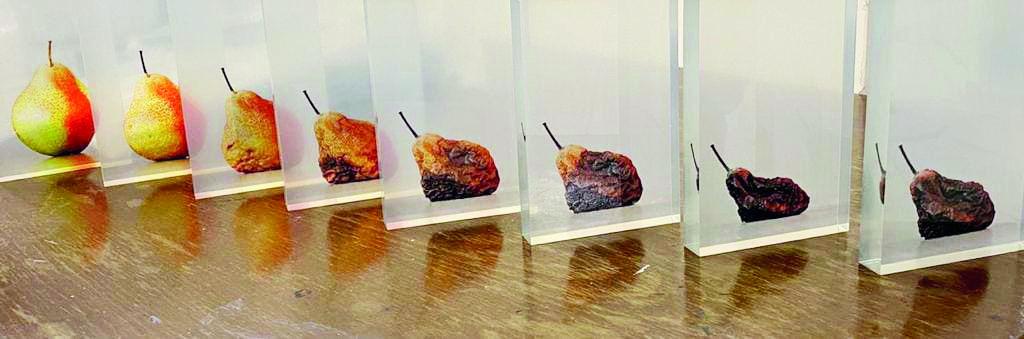 به مناسبت برگزاری نمایشگاه «زوال، دیالكتیك استمرار» در گالری فرمانفرما                                                                      هنر، تلنگری برای احیای جهان رو به زوال